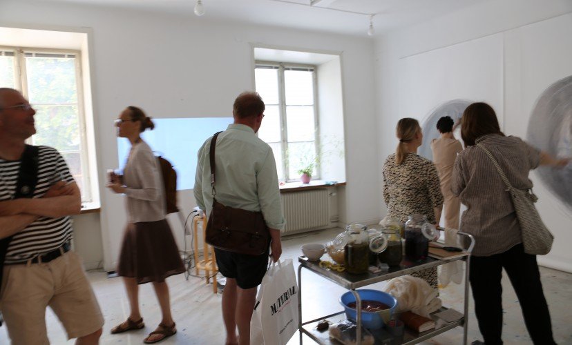 Ana Mendes, Drawing IV, 2019, performance/installation, 5 x 1.5 m, exhibition view Artificial Nature, Nordic Art Association, Stockholm, Sweden (c) photo Daria Jenolek