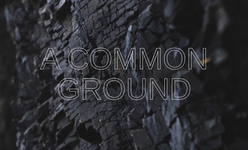 common ground and first annual meeting for independent curators