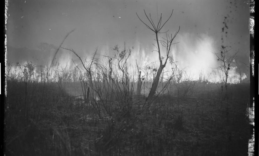 Fotografi taget av okänd missionär från Sv. Missionskyrkan runt 1900 i nedre Kongo