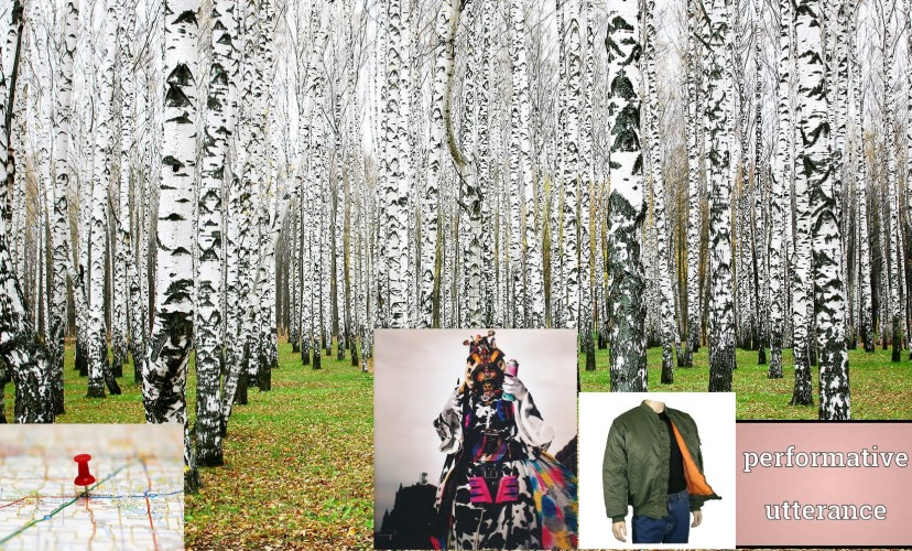 White birch forest forests